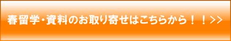 spring_ryugaku_banner