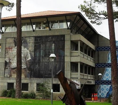 カーティン大学