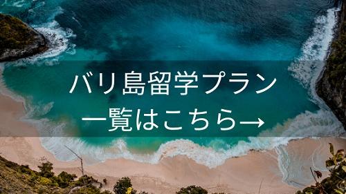 バリ島留学