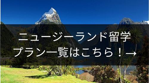 ニュージーランド留学プラン