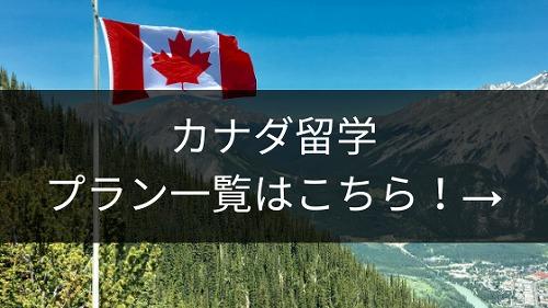 カナダ留学プラン一覧
