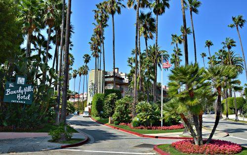 ロサンゼルス留学セミナー1